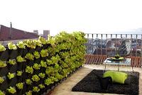 mini_garden_noir_balcon