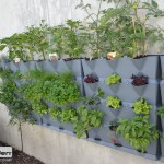 mur-vegetal-vertical-mini-garden