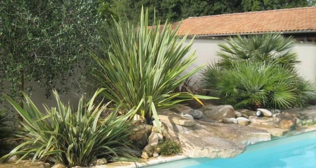 Une tendance qui perdure, le jardin méditerranéen !